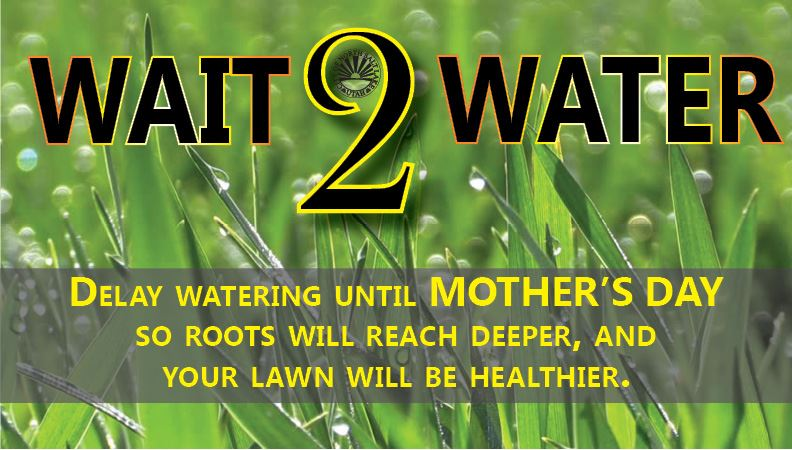 Wait to Water 2018