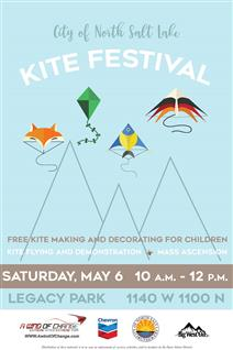 NSL Kite Festival 2017 (002) reduced.jpg