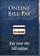 Online Bill Pay - Pay your city bill online